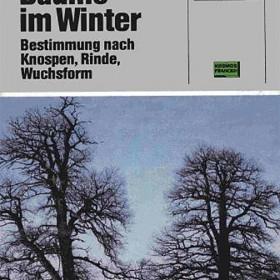 Bomen in de winter_duits