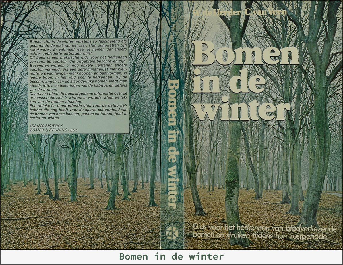 Bomen_inde_winter_Home_v001